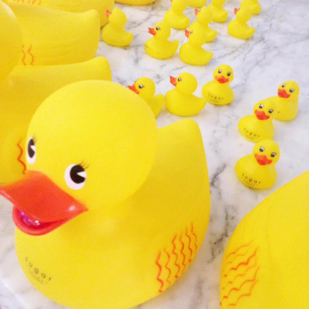 These little duckies had way too much sugar! You canhellip