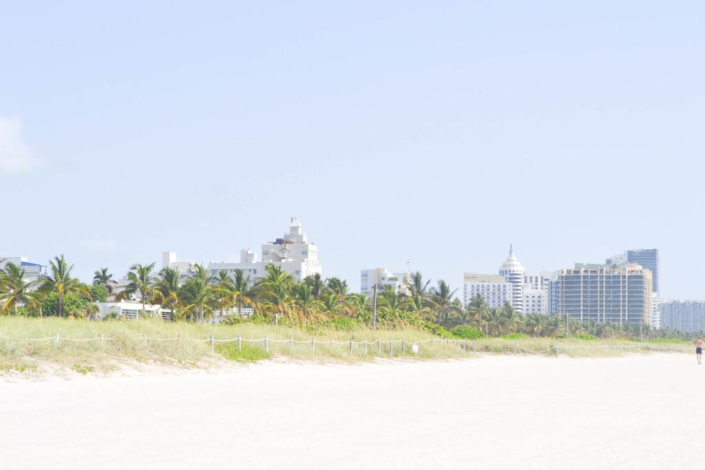 Miami Pics-12